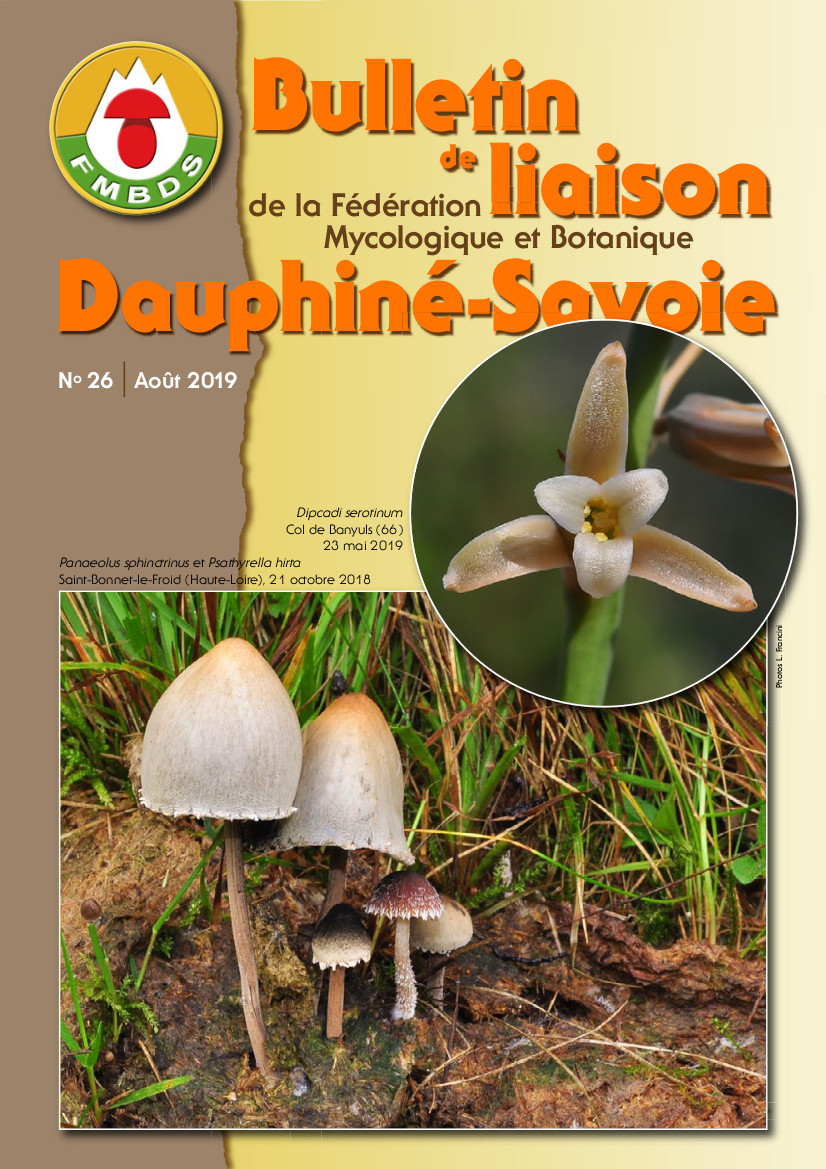 Bulletin_de_Liaison_No_26