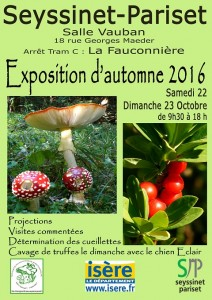 Affiche Seyssinet-Pariset 2016