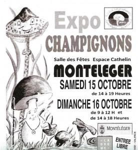 Affiche expo Montéléger 15-16 octobre 2016